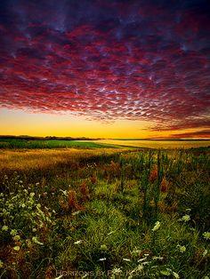 Pleasant Prairie ♥ ♥ www.paintingyouwithwords.com