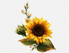 Sunflower Clipart, Sunflower Drawing, Sunflower Flower, Watercolor Sunflower, Watercolor Leaves, Watercolor Paintings, Sunflower Illustration, Illustration Blume, Nursery Drawings