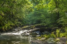 East Lyn River at Watersmeet, Devon, England - Neville Stanikk Photography