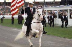 Tennessee Walking Horse...let 'em walk on!