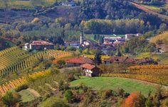 Turin is the ideal city break, but foodies should also head a short distance to the south, to the Langhe region, home of the Slow Food Movement, truffles and Barolo wines.