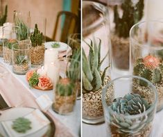 Mix glass vases with succulents and cacti for a desert-chic centerpiece display.