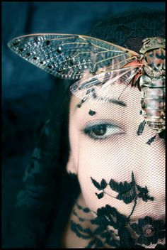 """(Moth and Lace  by ~torveniusphoto)  """"Why me? I'm not a nurse!""""  she often used to cry  at each turn for the worse.     She argues with him still,  as though he chose to die  that winter he fell ill.     I know, but never say  how long he yearned to lie  entombed in silent clay.     Sarcoma of the lung  was a doctor's alibi  for death by poison tongue."""""""