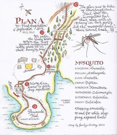 Mosquito map - Jocelyn Curry