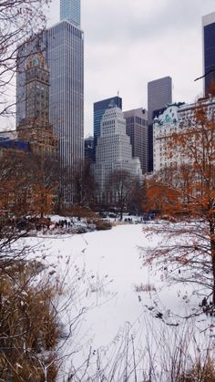 NYC Central Park   gabrielaprias Central Park, Skyscraper, Nyc, Building, Skyscrapers, Buildings, Construction, New York