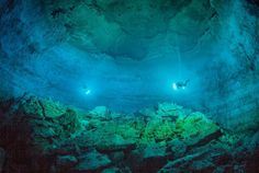 Underwater discovery in submerged Mexican cave provides glimpse of First Americans Tulum, Limestone Caves, Underwater Caves, Cave Diving, Scuba Diving, Shops, Sea World, Fauna, Early American