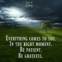 Be patient.  Be grateful.