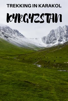 If you go trekking in Karakol, the trail that goes from Kyzyl Suu to Jeti Oguz, is one of the remotest and most beautiful treks in Kyrgyzstan