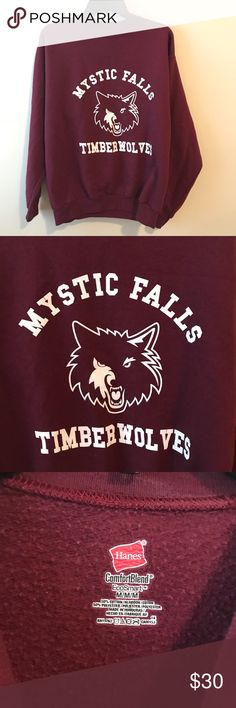 Vampire Diaries Sweatshirt no flaws whatsoever Brandy Melville Sweaters