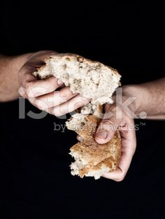Woman's hands holding a pieces of bread royalty-free stock photo