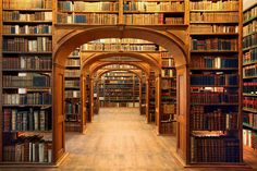 Though they are losing ground to the e-book and the audio book, libraries were once central hubs of human intellectual progress. There's something about them that still attracts people, however –