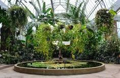 Image result for auckland winter gardens