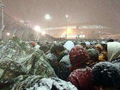 11 December 2013 Galatasaray - Juventus / Champions League Match  Galatasaray fans