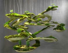 Robert Cannon, creates these amazing life size sculptures with concrete and moss. He calls his work, Terraform, or literally, earth-shaping.