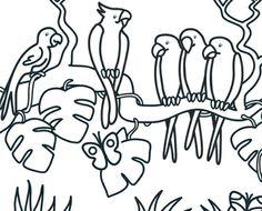 Kleurplaat Papegaaien