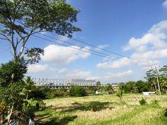4/25(月)晴れ 温度28.8℃、湿度71%。 爽やかな青空が広がる心地の良い朝です! 田んぼの先に大型ホテル建設中~