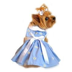 Soft Blue Denim Harness Dress Large >>> Details can be found by clicking on the image. (This is an affiliate link and I receive a commission for the sales)