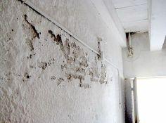 Cómo eliminar humedades en la pared