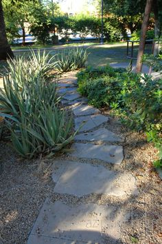 Pathway made from broken concrete - great example of sustainable landscaping.