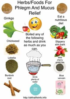 Dr Sebi mucus is the cause of every disease, the best ways to get rid of phlegm after eating and clear mucus from your throat AlkhaLife info is part of Holistic health remedies - Health Facts, Health And Nutrition, Health And Wellness, Mental Health, Holistic Remedies, Natural Health Remedies, Sinus Remedies, Healing Herbs, Natural Healing