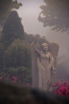 Dorper Friedhof / Cemetery Solingen Dorp