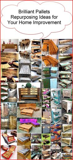 Polish your creative skills through interesting activities by reusing wood pallets. It is a unique craft making your surroundings pretty and providing aesthetic pleasure to your senses. Here's brilliant pallets re-purposing ideas for your home improvement.