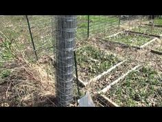 My Community Garden Plot Episode 1: I Finally Got It!, Fencing, Vinegar Brush Killer & Weed Block