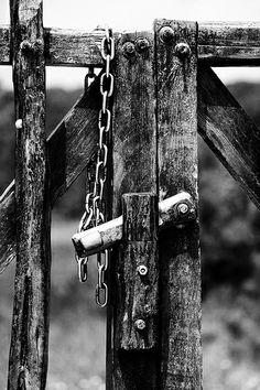 Non c'è cancello, nessuna #serratura, nessun bullone che potete regolare sulla libertà della mia mente. - Virginia Woolf