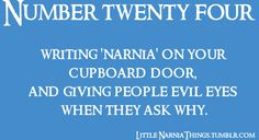 Little Narnia Things