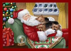 Santa has earned a power nap with lots of yorkie love.