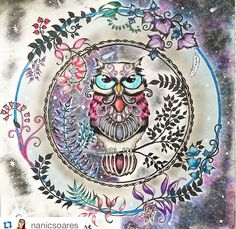 Johanna Basford | Enchanted Forest - Owl --> If you're looking for the top-rated adult coloring books and writing utensils including colored pencils, drawing markers, gel pens and watercolors, please visit http://ColoringToolkit.com. Color... Relax... Chill.