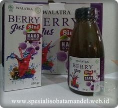 http://www.spesialisobatamandel.web.id/walatra-berry-jus/ berry jus