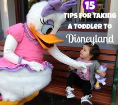 15 Tips For Taking a Toddler To Disneyland For my friends/followers who need the advice. :)