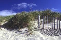 Cape Cod beaches Cape Cod beaches Cape Cod beaches
