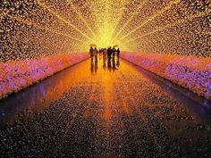 Festival of LED lights, Winter Illuminations at Nabana no Sato, a botanical garden on the island of Nagashima in Japan. With this year's theme being nature, the highlight is an incredible tunnel of light with tens of thousands of LED lights. Nabana No Sato, Oh The Places You'll Go, Places To Visit, Led Shop, Winter Light Festival, Light Tunnel, Monte Fuji, World Festival, Festivals Around The World