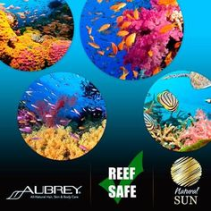 Aubrey Sunscreens Certain ingredients commonly found in sunscreens are causing irreparable damage to coral reefs worldwide. 4 to 6,000 tons of sunscreen washes off swimmers each year & the synthetic chemicals in the water are destroying algae and other marine life within the reefs. Aubrey's Natural Sun Care Products are deemed reef safe by National Geographic, & are also compliant with European standards…