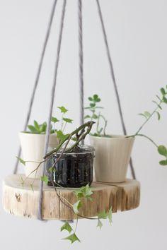 DIY Ronde plantenhanger van een houten plank // via Refreshed Designs