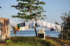 Yes... we still hang up the clothes outside in Trinidad...