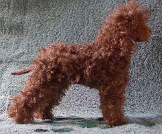 Irish Water Spaniel Dog Plush Soft Sculpture Original Art Not Needle Felted | eBay