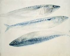 J.M.W. Turner. Sketch of Three Mackerel (c 1834-40) © The Ashmolean Museum, Oxford
