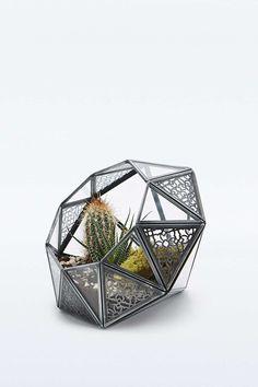 Urban Grow - Terrarium géométrique