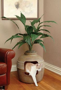 Litter box. Love this idea. Takes up little room and it isn't obvious.
