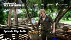 Luke gamble performs a roadside operation in India to remove a staggering of knotted plastic out of cow. From TV series Vet Adventures. Tv Series, Cow, Around The Worlds, How To Remove, Plastic, India, Adventure, Learning, Videos
