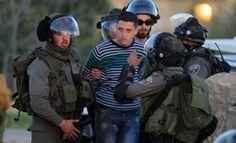 20 militants Palestiniens arrêtés à l'intérieur occupé - The Palestinian Information Center