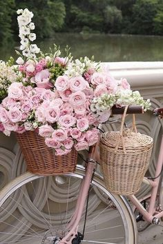 Sommer, rosa Blumen & ein rosa Fahrrad - was für eine schöne Kombination. The Effective Pictures We Offer You About decor baskets fillers A quality picture can tell you many things. You can find the m Fresh Flowers, Pretty In Pink, Pink Flowers, Beautiful Flowers, Romantic Flowers, Beautiful Soul, Vintage Flowers, Vintage Pink, Pink Flower Pictures