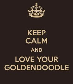 Better yet.....Keep Calm while loving your Goldendoodle