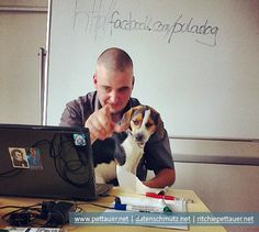 Teaching Social Media - the days of cat content are over!