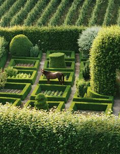 """visualjunkee: """" NATURAL BEAUTY - photography: Alexandre Bailhache - text: Mario López-Cordero - Veranda June/July 2016 • """"A Belgian garden by Jacque, Martin, and Peter Wirtz uses boxwood in playful contrast to vegetable beds, topiaries, and a lush..."""