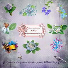 Recursos Photoshop Llanpac: Colección de clipart de flores azuladas (Png)