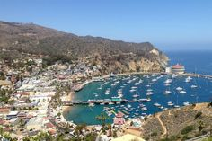 Things to do in Los Angeles: a visitor guide to LA's top sights and  best attractions.: #11. Chill Out on Catalina Island
